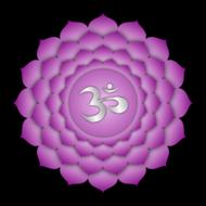 Zevende-chakra-(Sahasrara-of-kruinchakra)